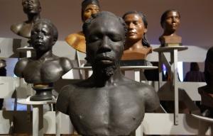 musee de l homme