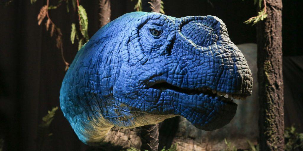Exposition Autour des Dinosaures