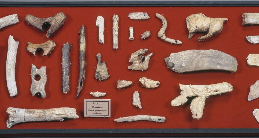 archeo 2 st germain en laye