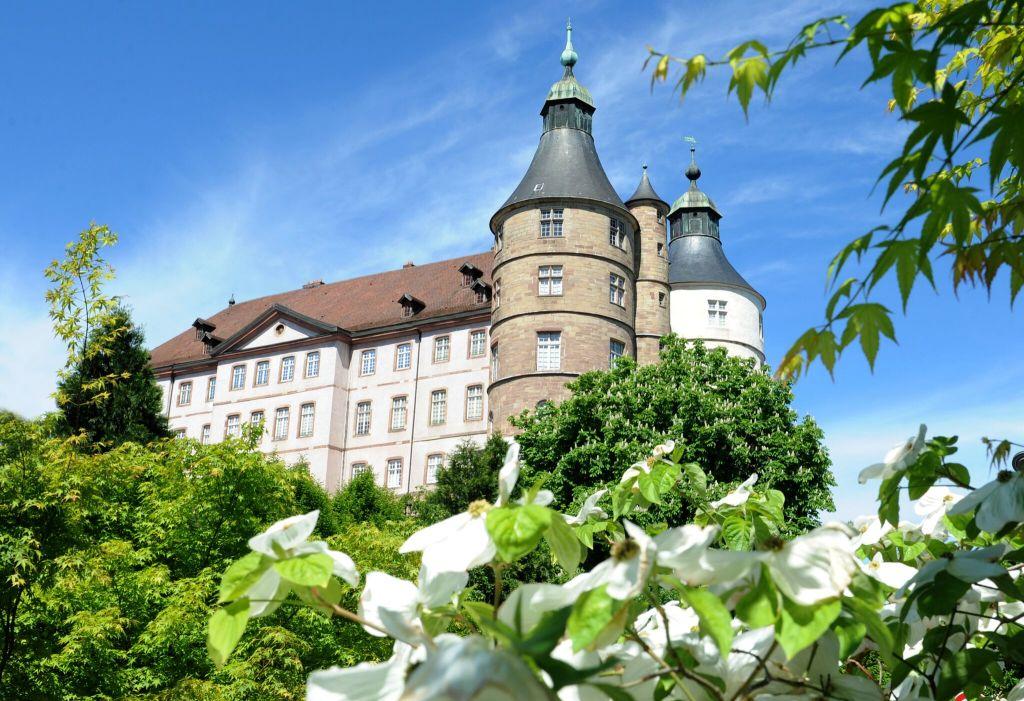 chateau ducs de wurtemberg