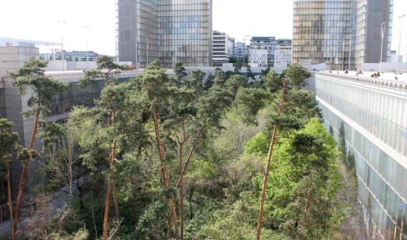 jardin bnf3