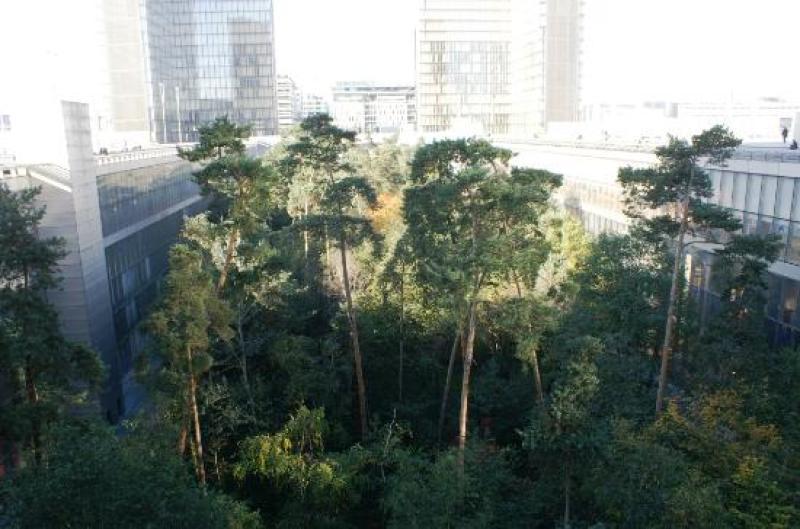 jardin bnf5