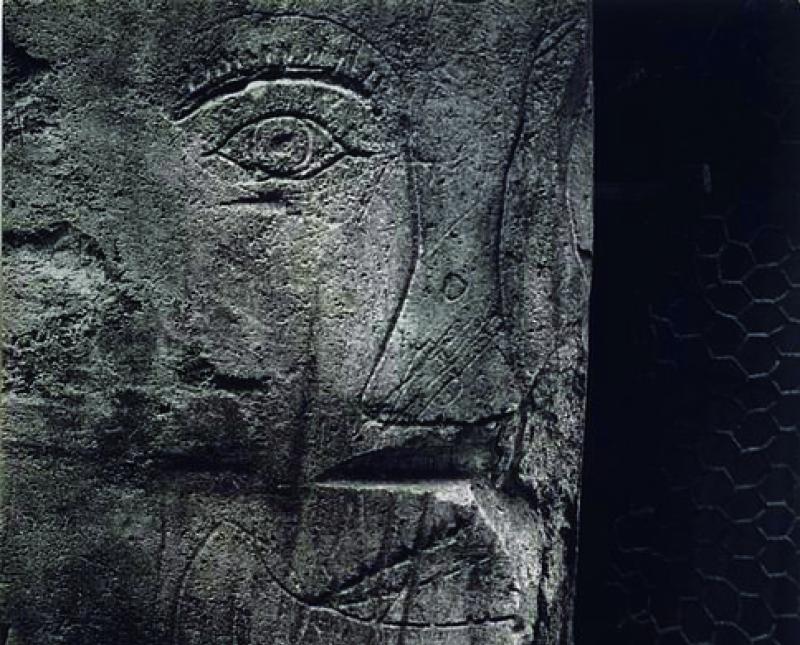 graffiti-serie-9-images-primitives