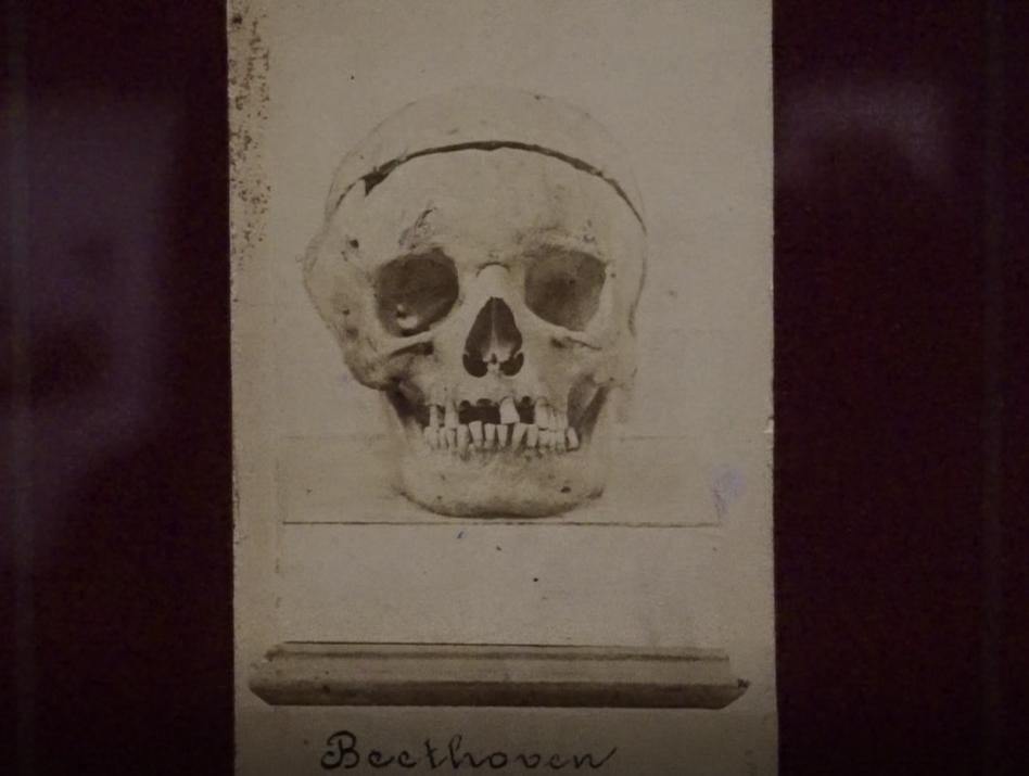 ludwig-van-beethoven-philharmonie21
